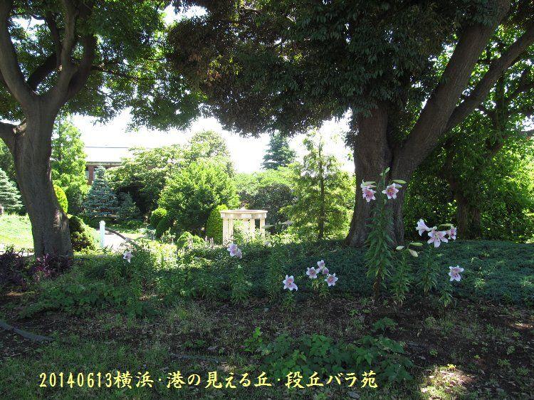 20140613okabara12.jpg