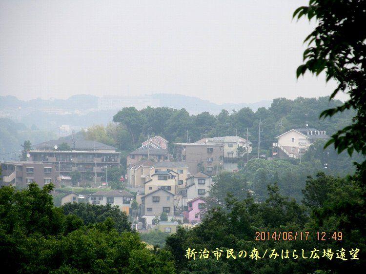 20140617niihari33.jpg