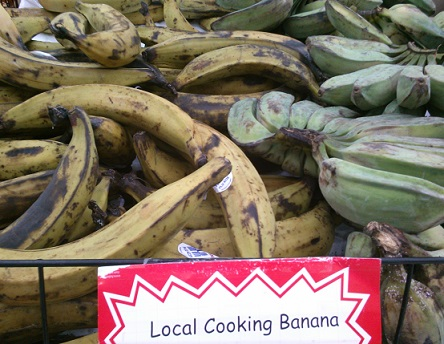 Local cooking banana