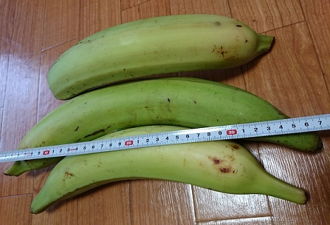 Big plantains