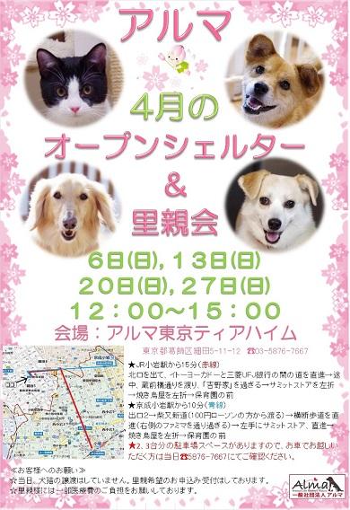 ALMA 4月オープンシェルター&里親会 お知らせ_607KB