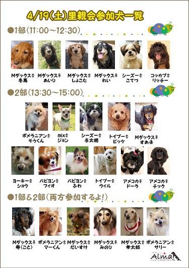 419参加犬