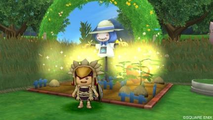 トマト畑2
