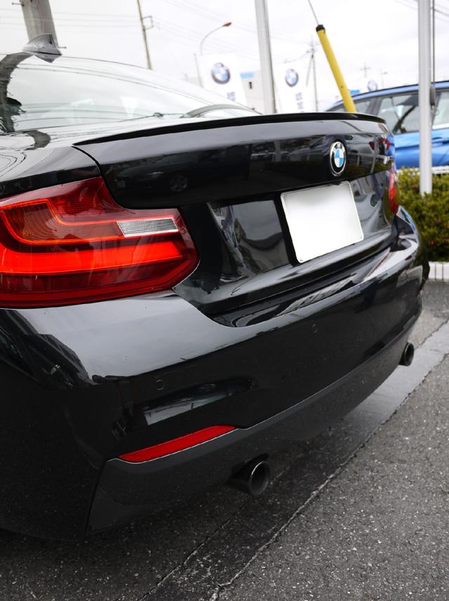 BMWM235i05.jpg