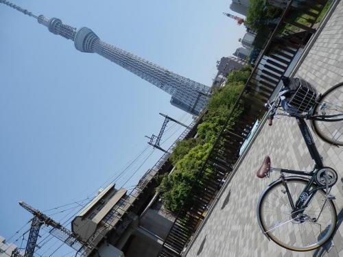 photo404-28-01.jpg