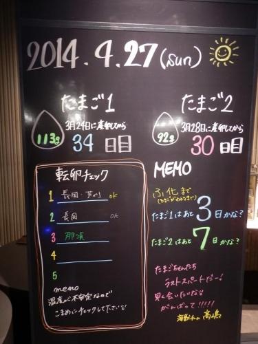 photo404-30-05.jpg
