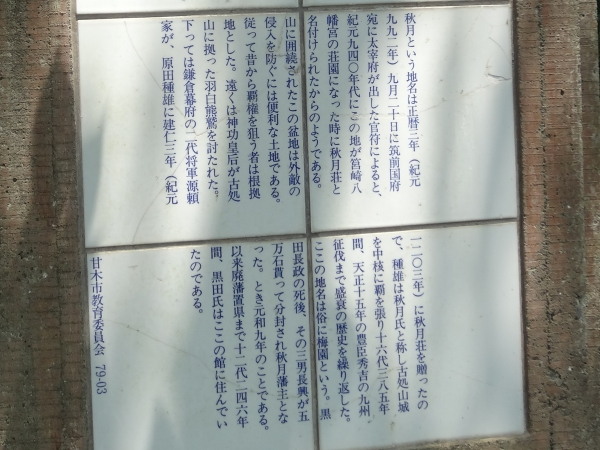 DSC04993.jpg