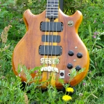 ALEMBIC IN お花畑 2