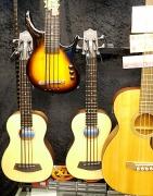2014 お盆 楽器屋 4