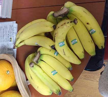 バナナいっぱい