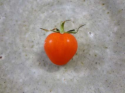 ♡のトマト