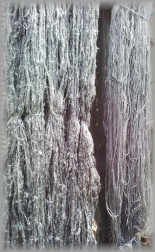 モッコウバラの糸