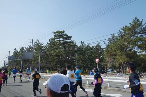 2013-0216-senshu10hamadera.jpg