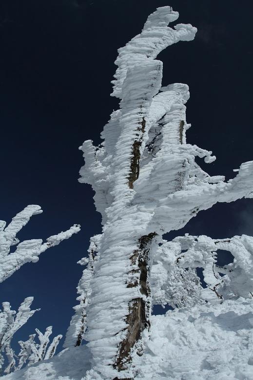 高見山にて、6