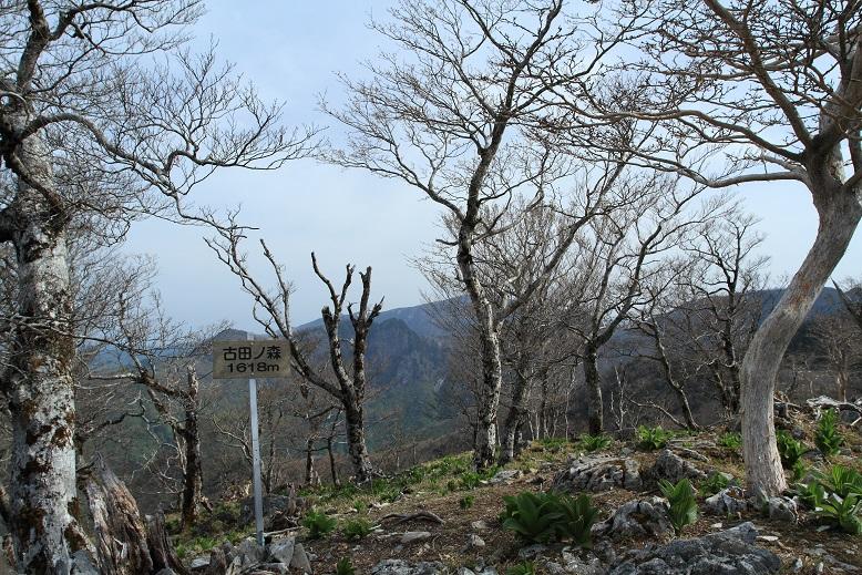 釈迦ヶ岳、11