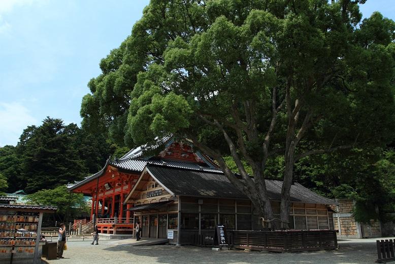 勝尾寺、6