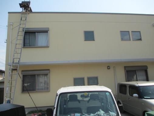 yosisogawa1.jpg
