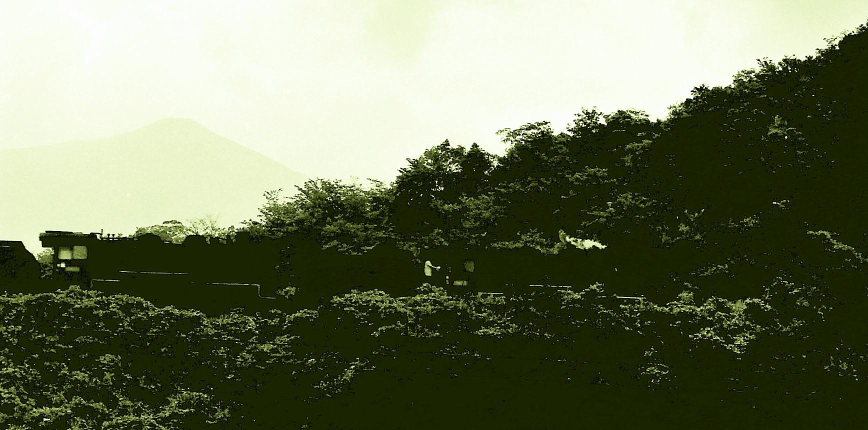 PICT0932x.jpg
