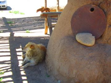 Taos Pueblo / 世界遺産 タオスプエブロ-15, 2014-6-17