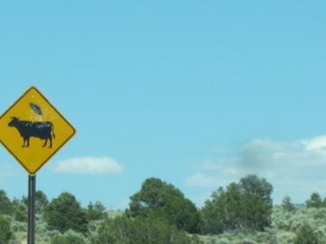 ニューメキシコで見付けた???な道路標識-3, 2014-6-25