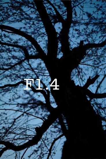 2014_0426_03.jpg