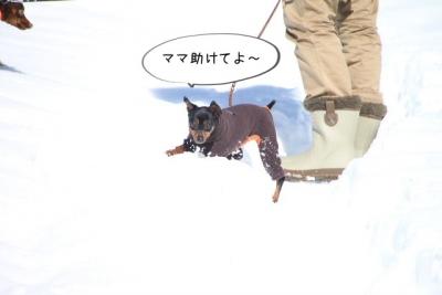 2014_02_16_9999_13.jpg