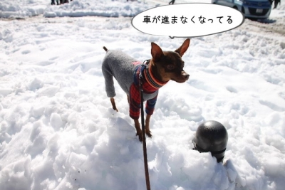 2014_02_16_9999_22.jpg