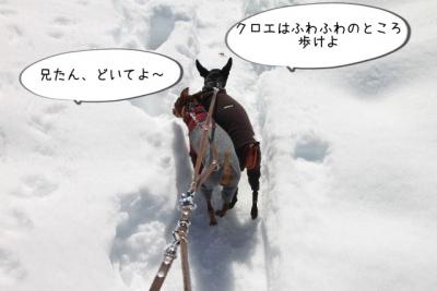 2014_02_16_9999_47.jpg
