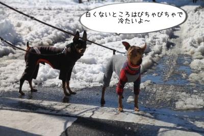 2014_02_16_9999_4.jpg