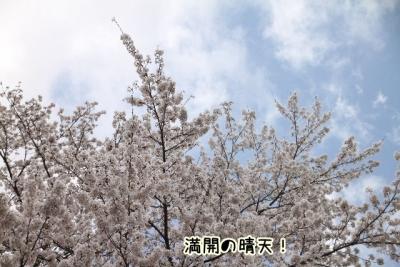 2014_04_05_9999_11.jpg