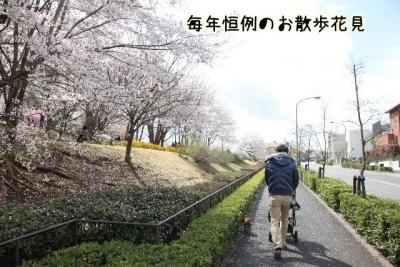 2014_04_05_9999_28.jpg