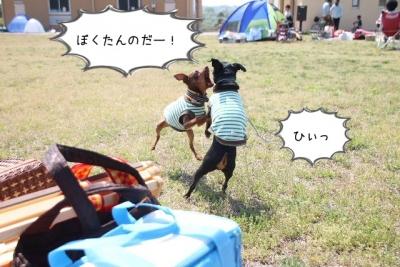 2014_04_27_9999_15.jpg