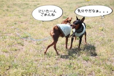 2014_04_27_9999_21.jpg