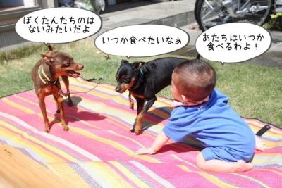 2014_05_18_9999_24.jpg