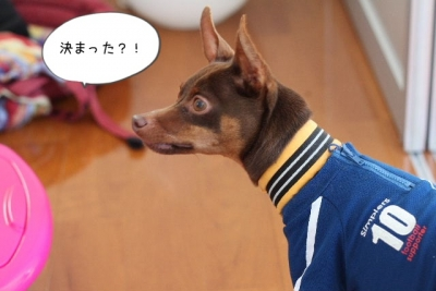 2014_06_15_9999_34.jpg