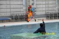 2014夏救助大会01
