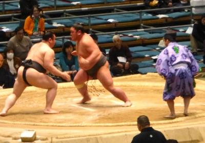 大相撲春場所