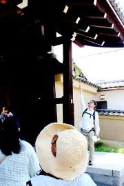 東福寺で解説中