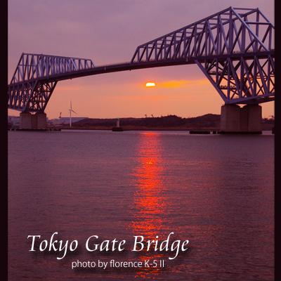 東京ゲートブリッジ140201