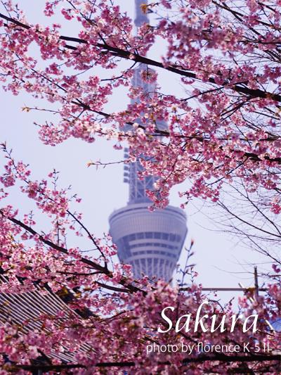 東京スカイツリー140301