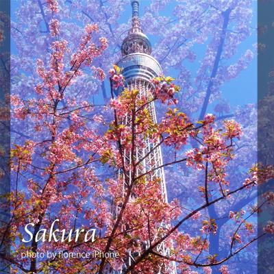 東京スカイツリー140302