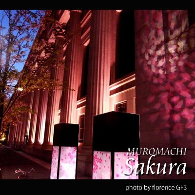 室町桜140301
