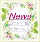 s-flower-frame039.jpg