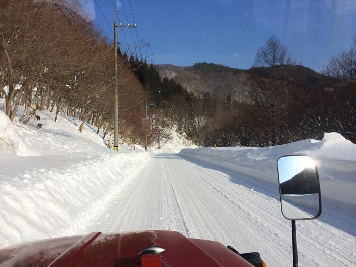 Mt kenashi 216001