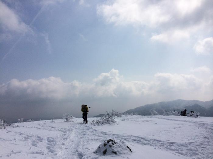 Mt kenashi 216021