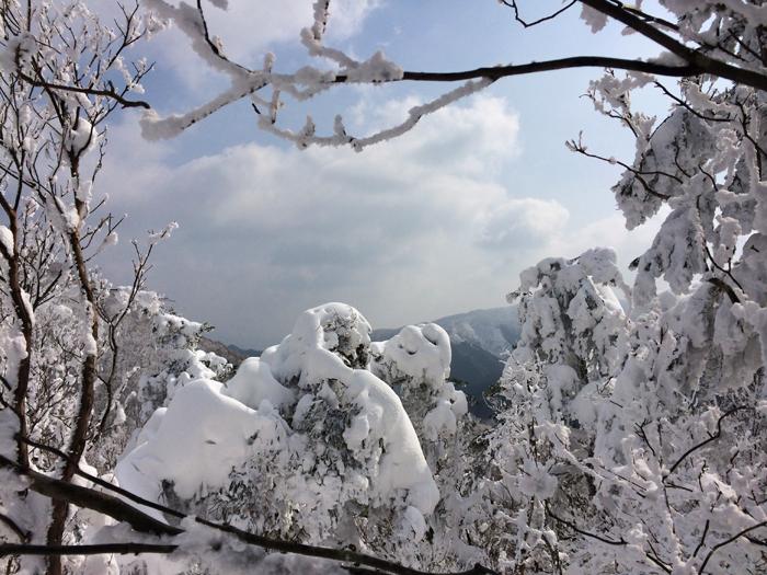Mt kenashi 216022