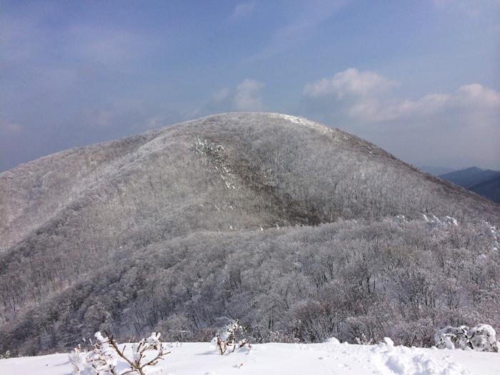 Mt kenashi 216024