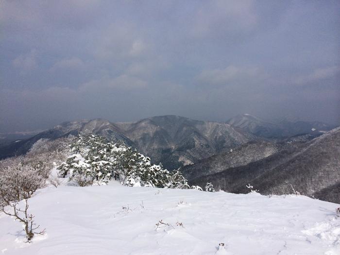 Mt kenashi 216025