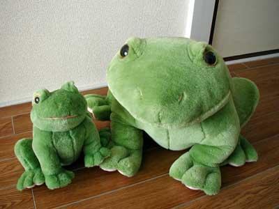 我が家で一番大きなカエル