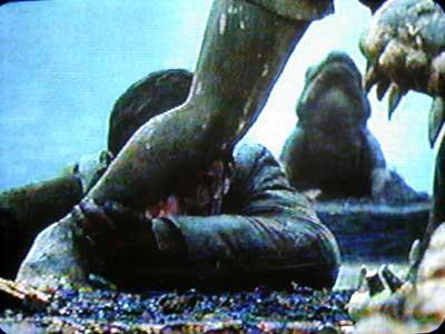 映画スターリングラードのカエル